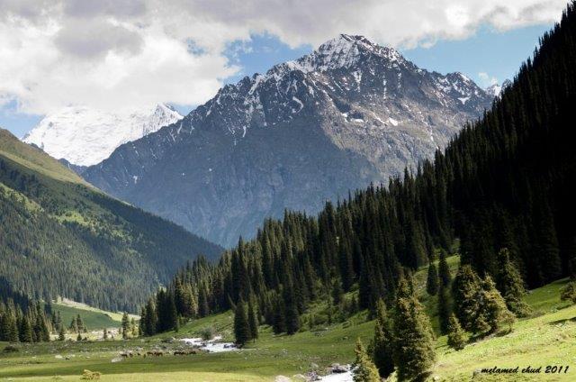 טרק בקירגיסטן