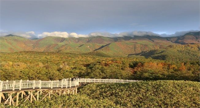 מסלול חמשת האגמים, שירטוקו, הוקאידו  צלמה: דקלה ברלינסקי
