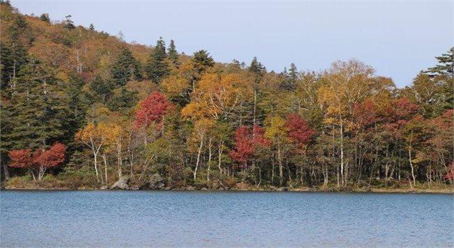 שלכת על אגם אונטו, הוקאידו, יפן,  צלם: אשחר יופה