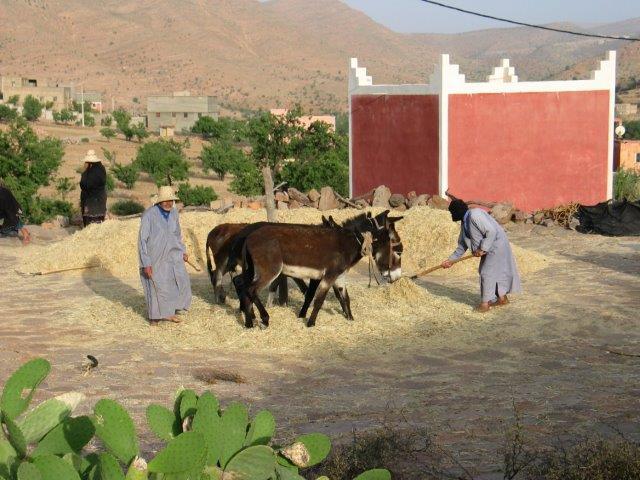 טרקים במרוקו