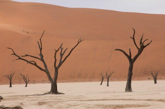טיול ג'יפים לנמיביה