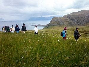 טיולים מאורגנים לנורווגיה